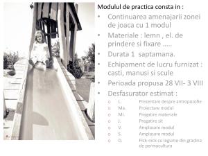 Practica Gradinita WALDORF tm